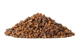 Propolis granules isolated on white background Royalty Free Stock Photography