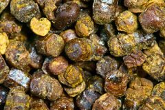 Propolis granules texture, bee product Royalty Free Stock Photos