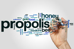 Propolis word cloud Royalty Free Stock Image