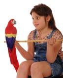 Proponendo con un pappagallo fotografie stock
