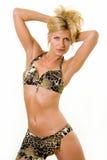 Proponendo in un bikini Fotografie Stock