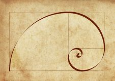 Proportion of Nature. Fibonacci Spiral on an Ancient Paper Stock Images