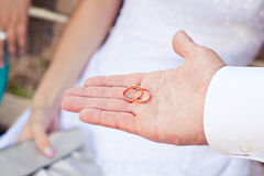 Proposal with golden rings Stock Images