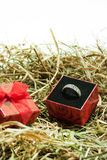 Proposal ring with gift box in the easter nest Stock Photography