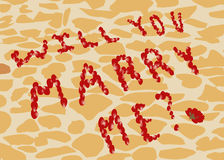 Proposal to marry of rose petals on the background of street tiles Royalty Free Stock Photo