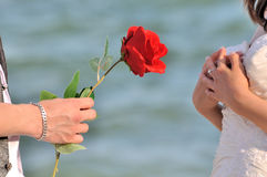 Propose for love and surprise. Young man is proposing for love with a red rose royalty free stock images