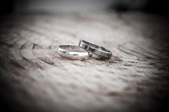 Propose with a ring Stock Photography