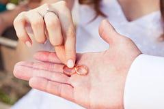 Proposition avec les anneaux d'or Images libres de droits