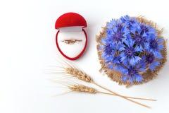 Proposition de mariage avec des anneaux d'or dans la boîte rouge de coeur Images libres de droits