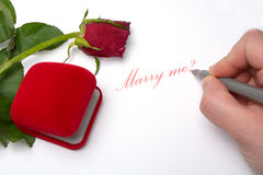 Proposta de união romântica Fotos de Stock