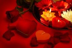 Proposta de união romântica Imagem de Stock