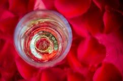Propozycja z pierścionkiem w szampańskim szkle fotografia stock