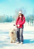 Propriétaire de femme et chien blanc de Samoyed sur la laisse marchant en hiver Photographie stock