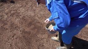 Propriétaire de maison privé semant semant des graines d'herbe de pelouse dans sa cour Mouvement tenu dans la main banque de vidéos