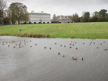 Propriedade de Castletown, Celbridge, Kildare, Irlanda Imagem de Stock