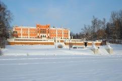 Propriedade de Marfino no inverno Fotografia de Stock Royalty Free