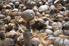 Proprietà della noce di cocco in Sri Lanka fotografie stock
