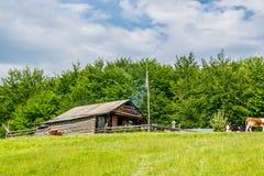 Proprietà rurale in legno immagine stock