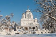 Proprietà terriera Vyazemy pieno di inverno a Mosca Russia fotografia stock libera da diritti