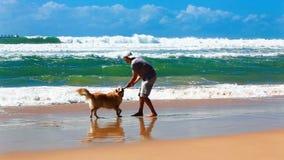 Proprietário masculino em uma praia com um cão video estoque