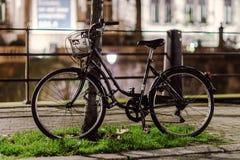 Proprietários de espera da bicicleta na rua da noite fotografia de stock royalty free
