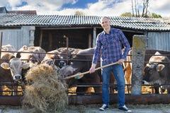 Proprietario di ranch maschio in un'azienda agricola Fotografia Stock
