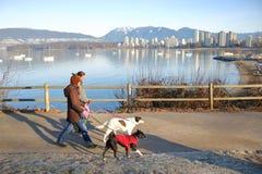 Proprietários do cão que tomam a caminhada cênico com animais de estimação Imagens de Stock Royalty Free