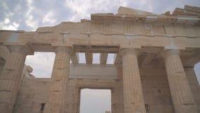 Propylaea antigo video estoque