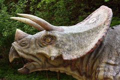 prorsus triceratops obrazy royalty free