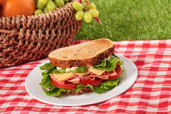 Prosciutto di picnic di estate e panino del formaggio tostati paniere Fotografia Stock Libera da Diritti