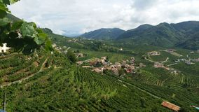 Prosecco Hills of Notheast Italy Stock Images