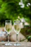 Prosecco. Two glasses of prosecco in the garden royalty free stock photo