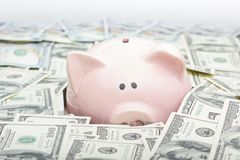 Prosiątko bank i dolara gotówkowy pieniądze biznesu, finanse, inwestyci, oszczędzania i korupci pojęcie, zdjęcie stock