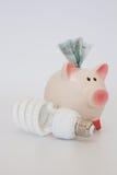 Prosiątko bank i energooszczędna żarówka Fotografia Stock