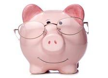 Prosiątko bank jest ubranym czytelniczych szkła Obrazy Stock
