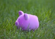 Prosiątko bank w zielonej trawie Obrazy Royalty Free