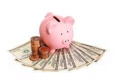 Prosiątko bank z pieniądze odizolowywającym na bielu. Dolarowi rachunki Obrazy Stock