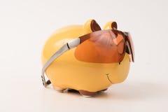Prosiątko banka okulary przeciwsłoneczni Obraz Stock