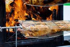 Prosiaczki na gigantycznym grillu Zdjęcie Stock