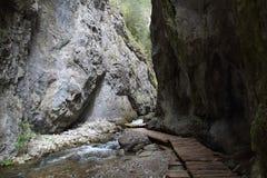 Prosiek峡谷,斯洛伐克 库存照片