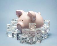 Prosiątko bank otaczający kostkami lodu Obraz Stock