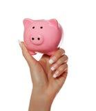Prosiątko bank w żeńskiej ręce odizolowywającej na bielu. Savings Obraz Stock