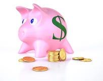 Prosiątko bank z niektóre złocistymi monetami wokoło Fotografia Royalty Free