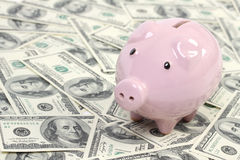 Prosiątko banka stylu pieniądze pudełko na tle z pieniądze amerykanina sto dolarowymi rachunkami Obraz Stock