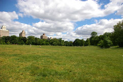 Prospect Park Brooklyn NY. The Long Meadow, Prospect Park, Brooklyn, New York looking north Royalty Free Stock Photos