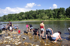 Prospecteurs d'or de tous les âges sur les banques de la rivière de Gardon Image stock