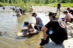 Prospecteurs d'or de tous les âges sur les banques de la rivière de Gardon Photos stock