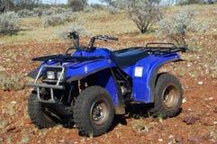 Prospection do rolamento do ouro no arbusto australiano Fotos de Stock