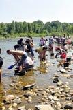 Prospectores del oro de todas las edades en los bancos del río de Gardon Foto de archivo