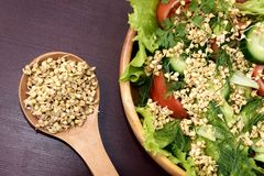 Prospects buckwheat. Fresh vegetable salad. Brown background. Dark brown background Stock Image